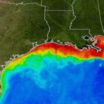 Gulf of Mexico deadzone