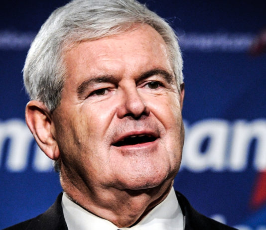 spineless newt issues video apology daring trump wouldnt drain swamp