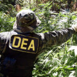 marijuana_dea_4364367828