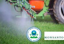 Monsanto Roundup & EPA