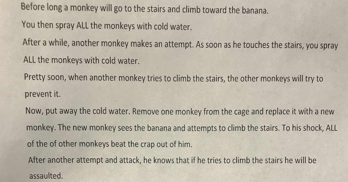 Tensions over monkey email erupt on House floor