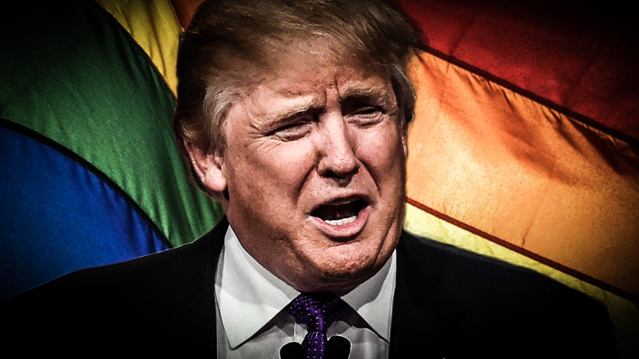 Trump gay