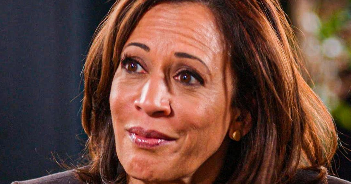 Does Kamala Harris Bring Anything To The Democratic Ticket ...