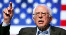 What Was The Nevada Convention Like For A Bernie Delegate? – Thom Hartmann Program